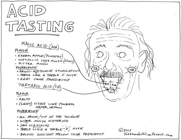 AcidTasting-620x478